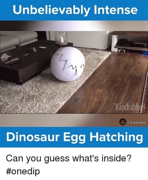 25+ Best Memes About Egg Hatching   Egg Hatching Memes