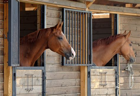 Barn and Stable Ventilation | EquiMed - Horse Health Matters